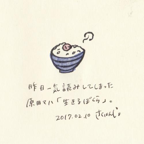 【およそ3センチ角の日記】20170210 うめぼし