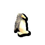 7/26(金)高円寺ペンギンハウス アマノサクヤ ソロでライブやります。